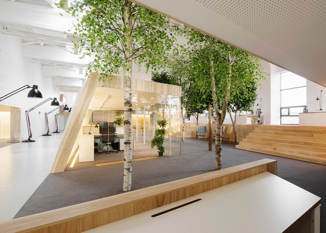 tree-filled-office-4
