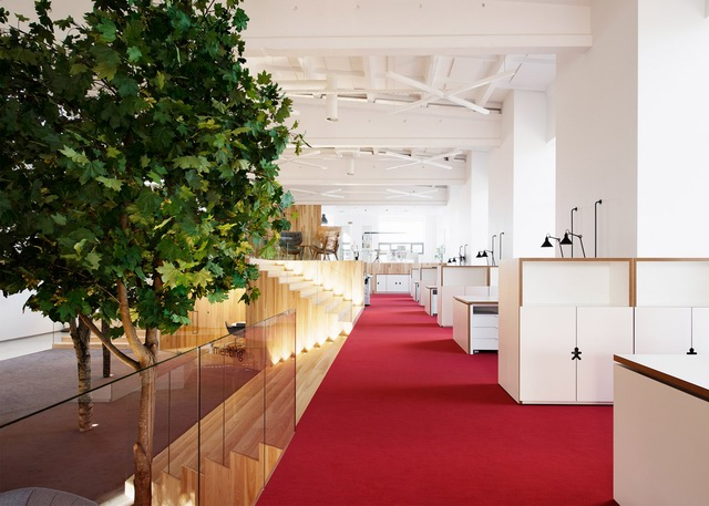 tree-filled-office-5