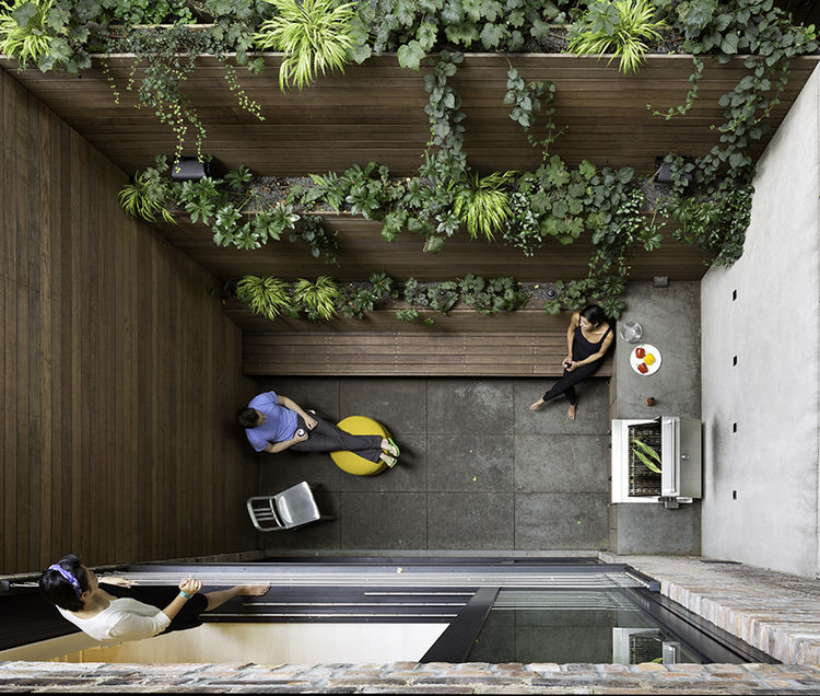 sooth_sayer-renovation-new-york-extended-content-garden-patio